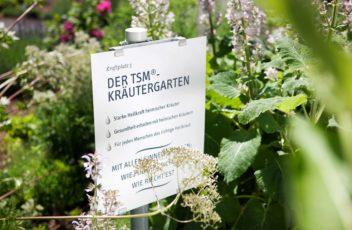 TSM Kräutergarten
